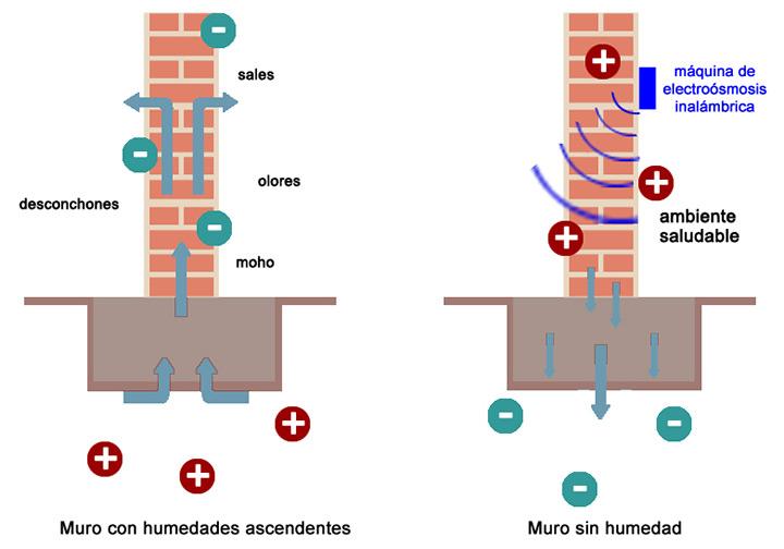 electroosmosis-inalambrica-mallorca conforthome.net